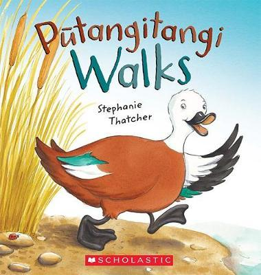 Putangitangi Walks Cover Image
