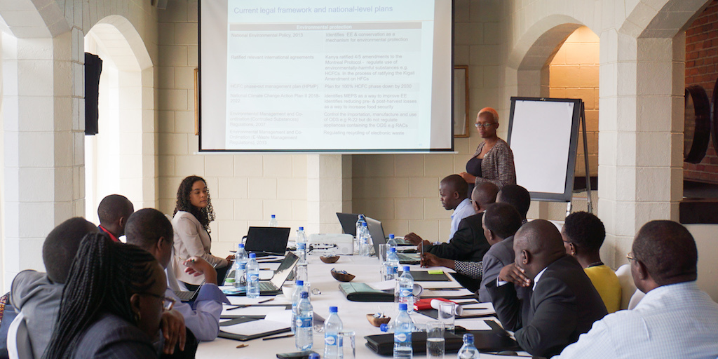 CLASP's Rebecca Schloemann and Naomi Wagura leading a technical working group in Nairobi in support of Kenya's National Cooling Action Plan