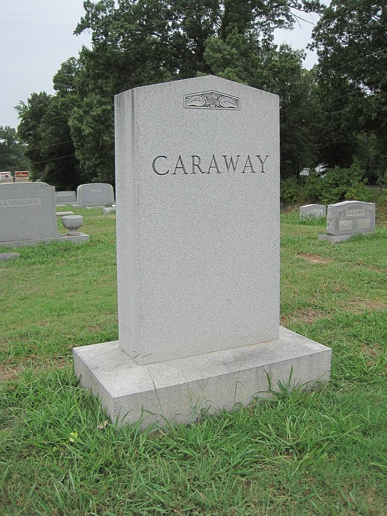 Plant, Cemetery, Tree, Grave