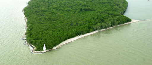 An arial view of the West Sister Island Lighthouse as it currently stands.
