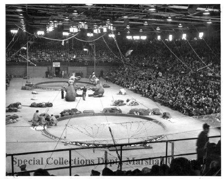 Polack Bros Circus at Memorial Field House in 1954