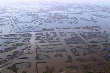 Canals cut through Louisiana's Coast