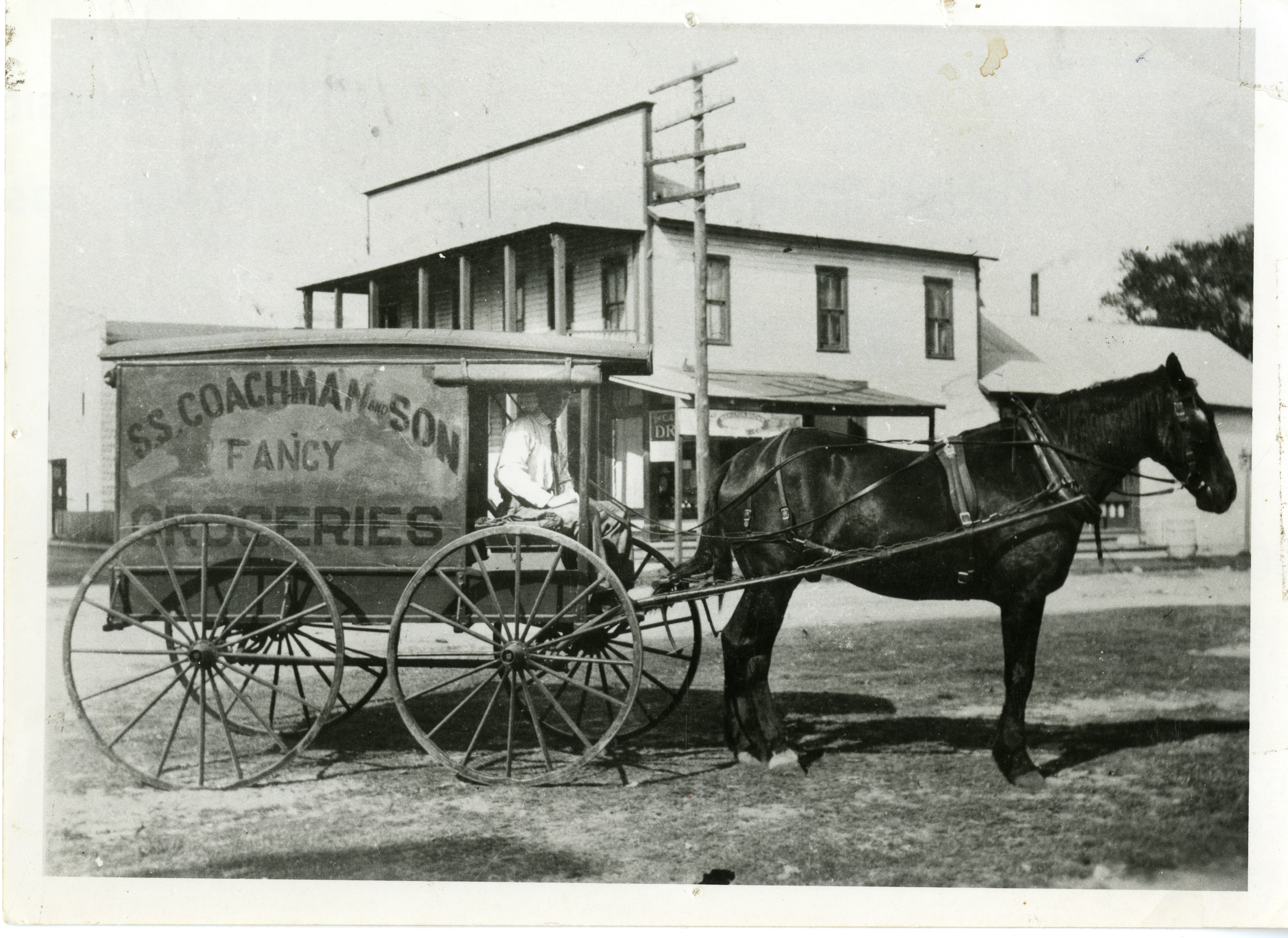 S.S. Coachman and Son Fancy Groceries horse drawn wagon, Clearwater, Florida, 1908.