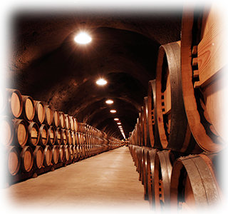 """The cave,"" also called the ""infinity wine cellar,"" shown here in 2003"