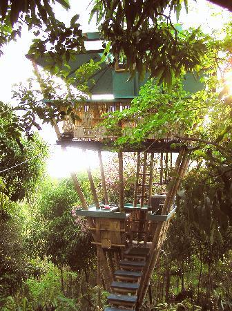 Sunset Hooch, the last cabin created by Joe Scheer.