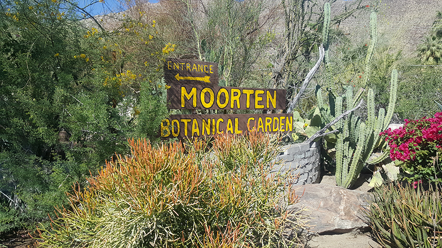 The Historic Moorten Botanical Garden