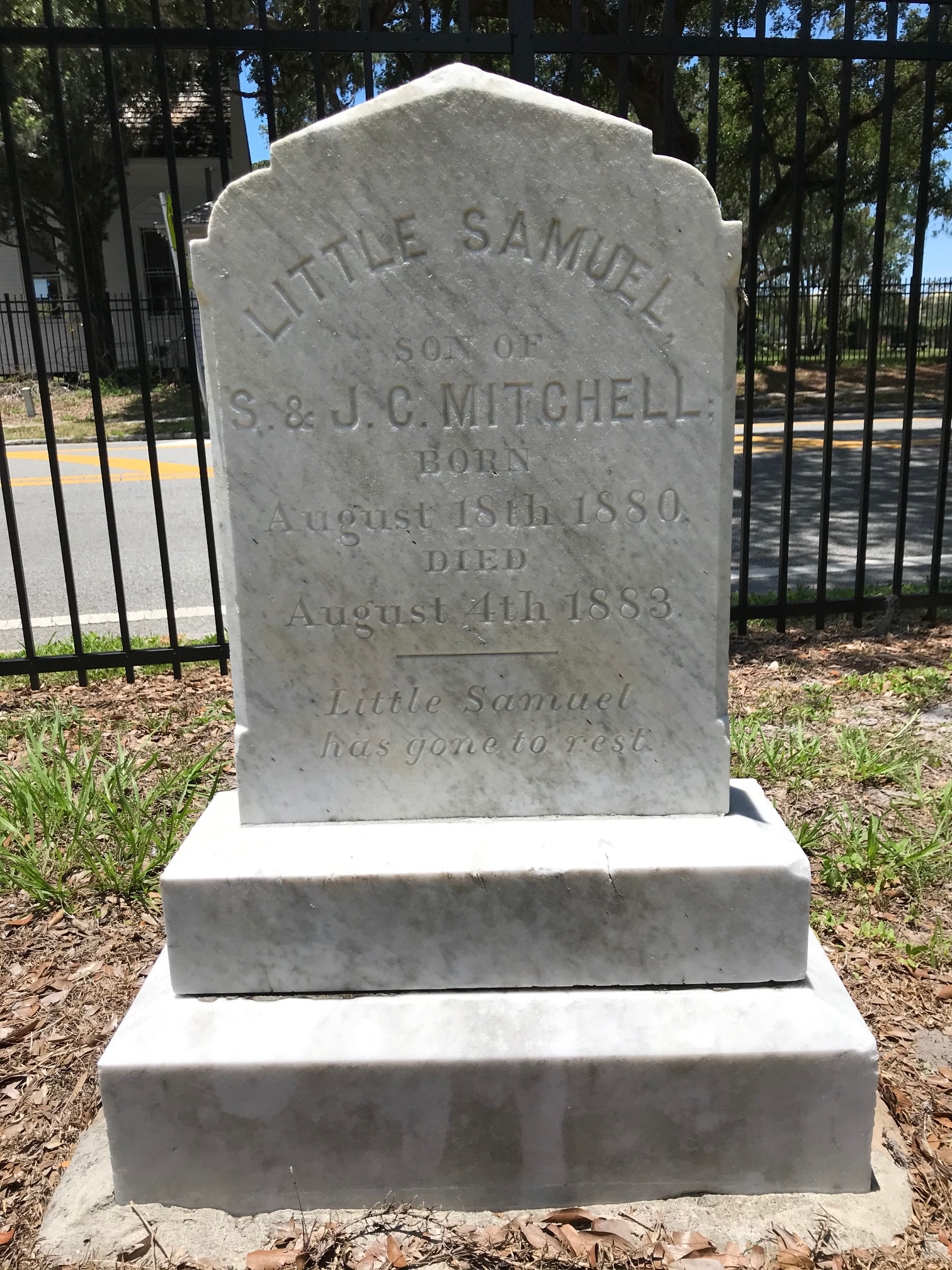 Little Samuel Mitchell (1880-1883)