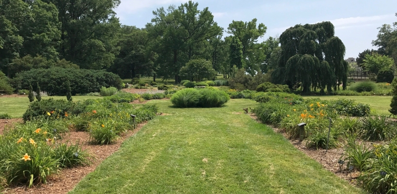 Perennial Collection at National Arboretum, courtesy of its website (public domain)