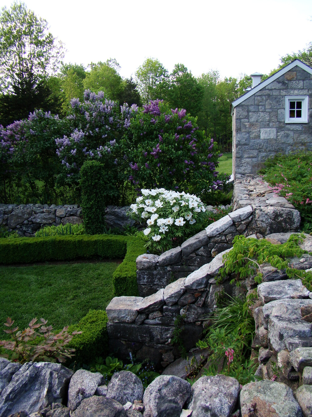 A shot of the gardens at Weir Farm. A low stone wall runs around the perimeter of the garden. Stone steps lead down into the space. A stone cottage can be seen in the distance. Several flowering shrubs are present.