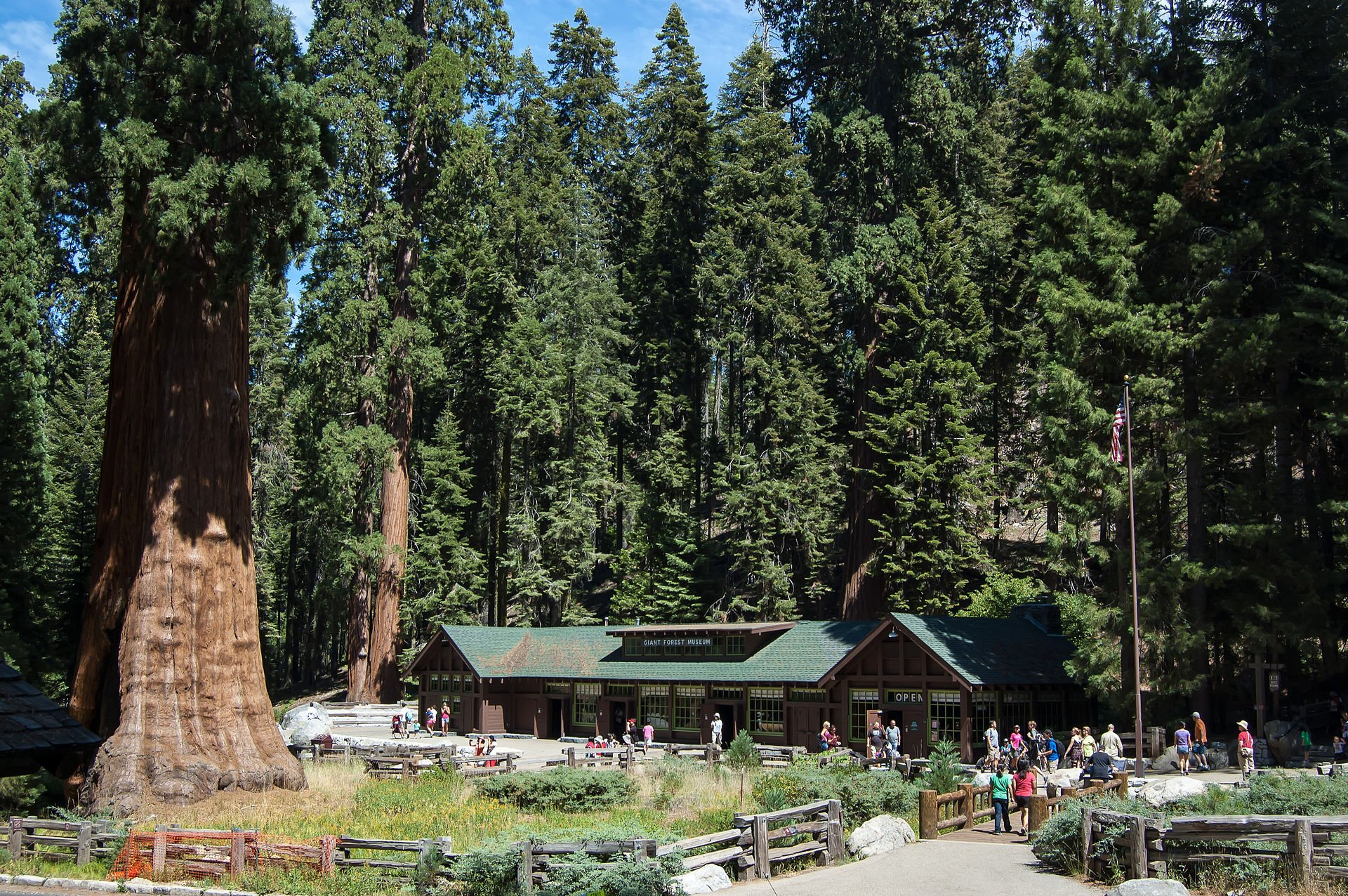 The Giant Forest Museum has exhibits about the history of Sequoia National Park.