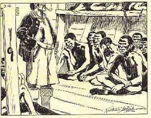 A drawing of slaves aboard the Africane.