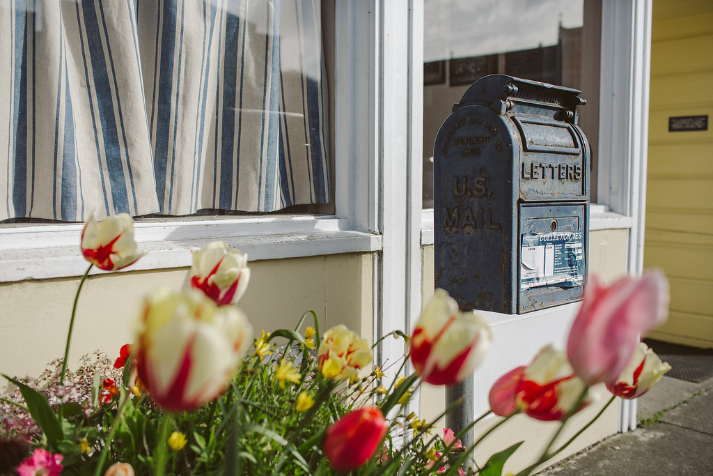 Quaint charm in the Victorian Village of Ferndale