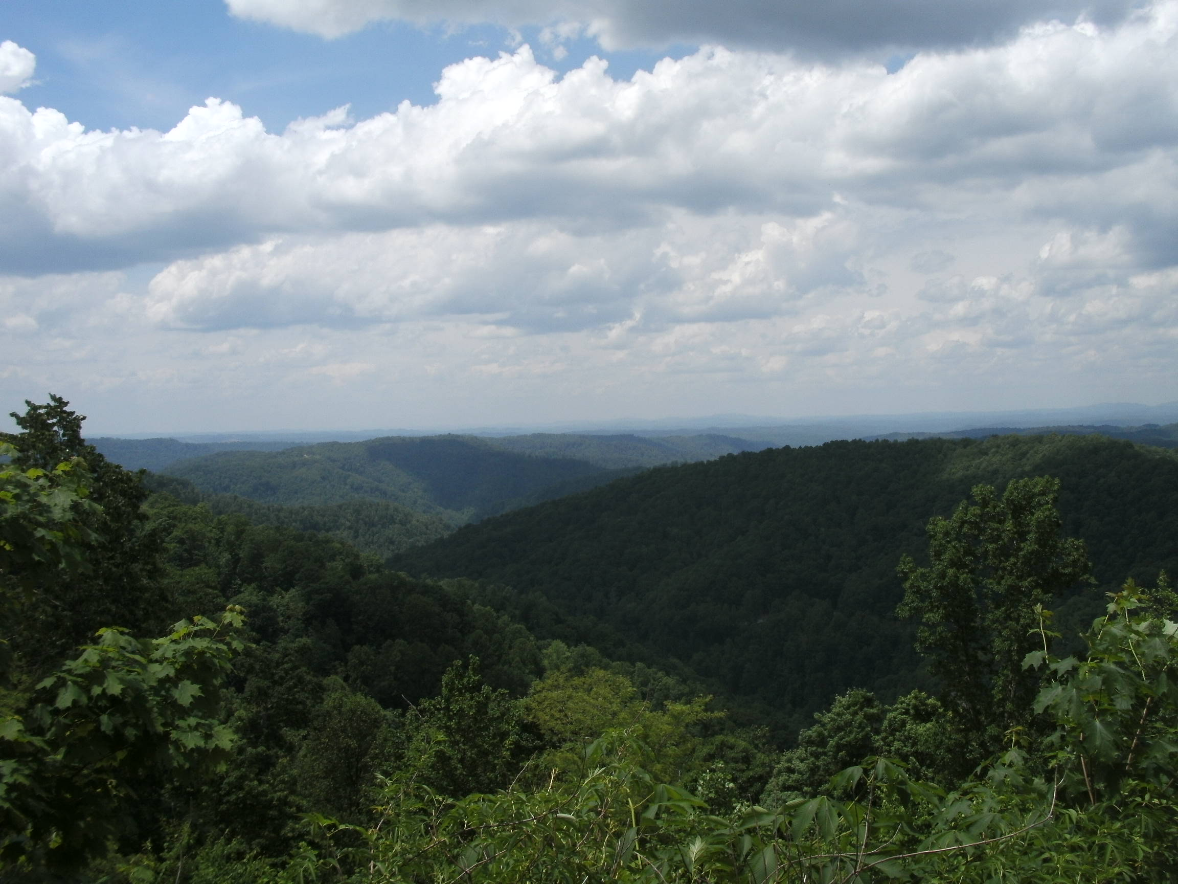 View from Flat Top Mountain looking toward Princeton.  (Photo by Steven Hart)