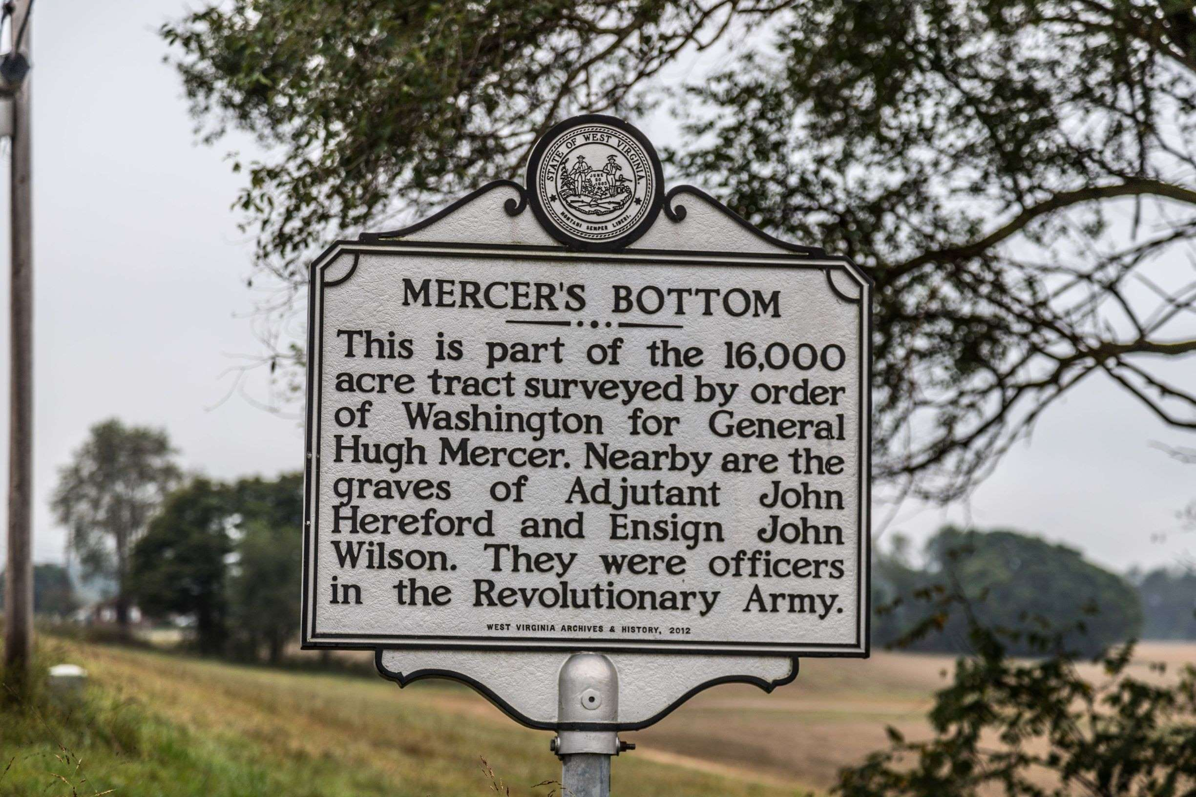 Mercer's Bottom Side