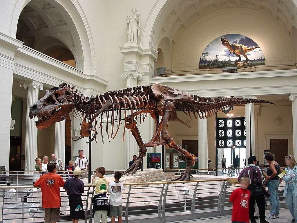 Sue, the largest and best-preserved T-Rex fossil remains in the world.