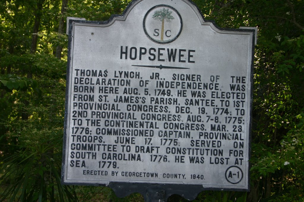 This sign tells you about Thomas Lynch Jr. who was one of the signers of the Declaration of Independence. Photo: http://www.panoramio.com/photo/2595164