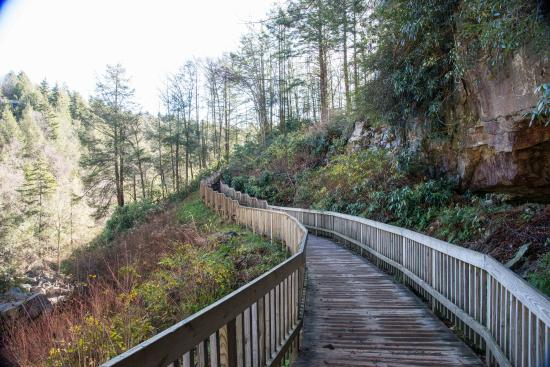 Some of the 214 steps that you must travel down to get to the falls. Not only are the wooden stairs there, but there is also a handicap trail.