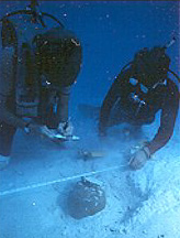 A photo from the Mel Fisher website of divers searching for lost items.