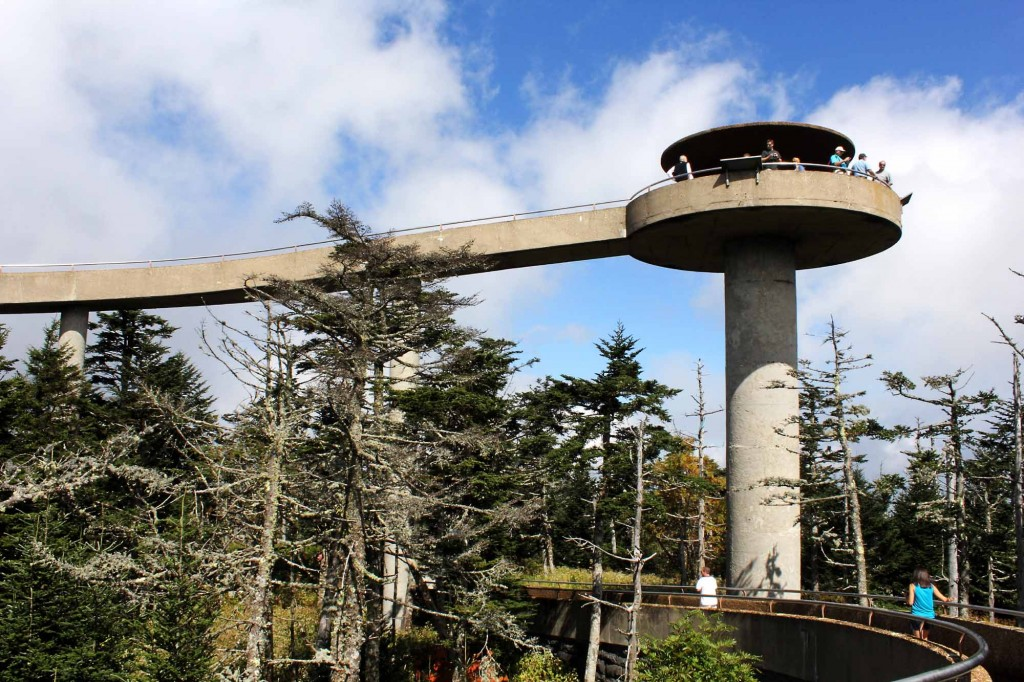 This is a fantastic photo by Andrew Bald of Clingmans Dome.
