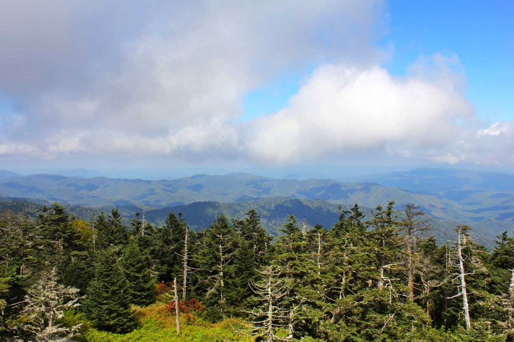 This is a fantastic photo by Andrew Bald of the view from Clingmans Dome.