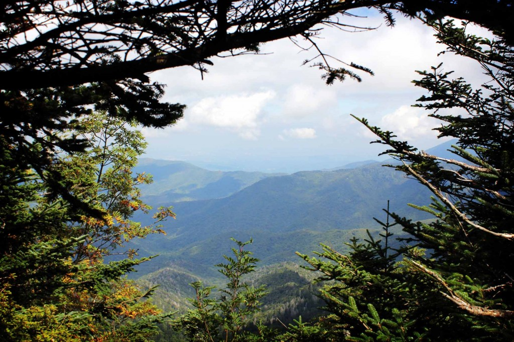 This is another fantastic photo by Andrew Bald of Clingmans Dome.