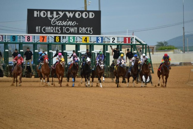 This is the starting gate for horse racing for the Hollywood Casino at Charles Town Races in 2012.