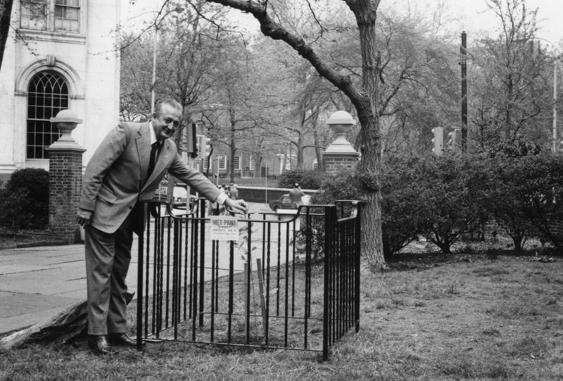 The first Moon Tree, planted in 1975 by George Vitas of the US Forest Service in Washington Square Park, Philadelphia (via Forest History Society).