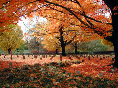 An image of the Confederate Burial Grounds