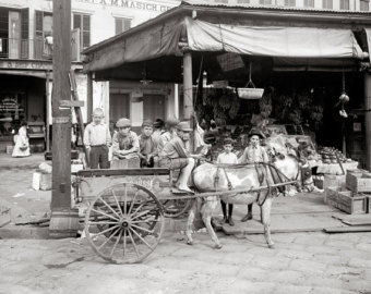 "A 1910 photograph of a food cart in the ""Little Italy"" section of the French Quarter."