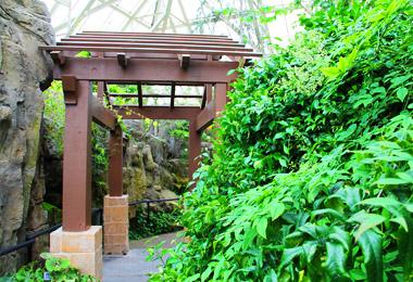 Conservatory: Himalayan Mountain Biome