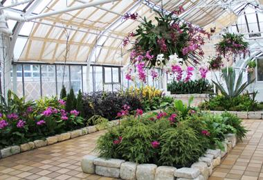 Conservatory: Dorothy M. Davis Showhouse