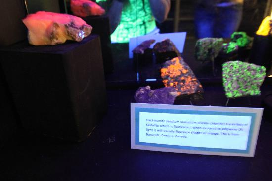 This exhibit shows fluorescent minerals under black light. These colors do not appear under regular lighting.