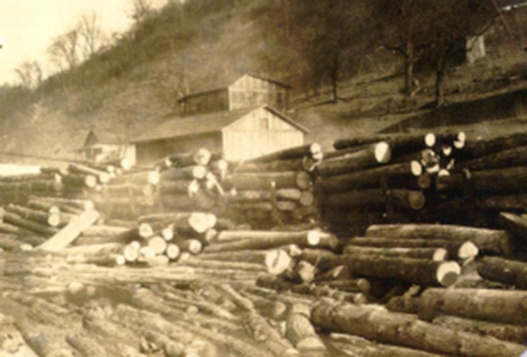 Wood, Building, Logging, Tree