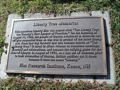Photograph of the Liberty Tree Memorial Historical Marker.