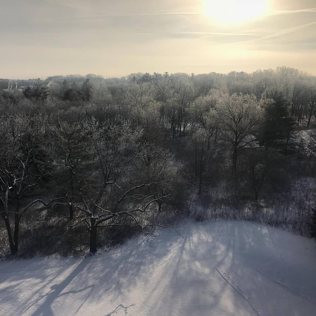 Winter View of Lake of the Woods Forest Preserve from the Top of HI Tower