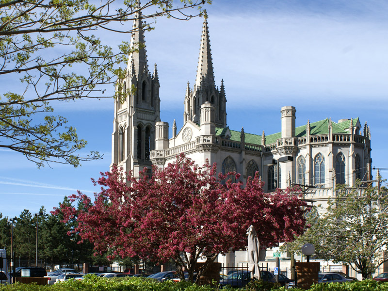 The Cathedral in the springtime, when it shines the brightest white.