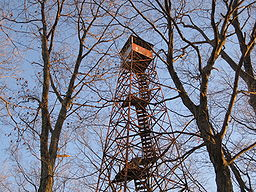 The Firetower