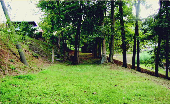 The portion of the old road where the battle took place visible from Bloss Hill Road.