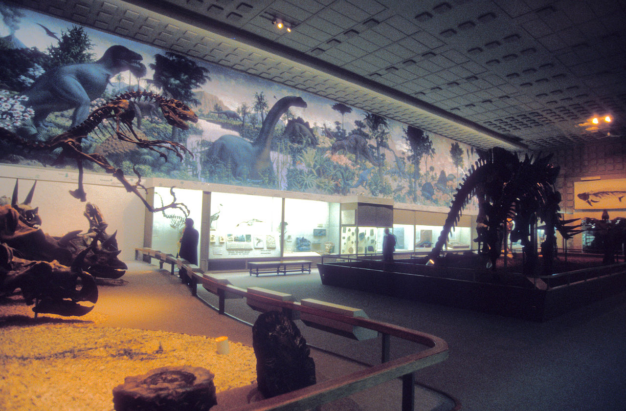 A view of the Great Hall of Dinosaurs