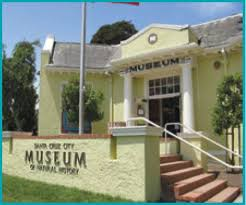 """The Santa Cruz Museum of Natural History is often referred to as """"the whale museum"""" by locals owing to its incredible collection of marine life."""