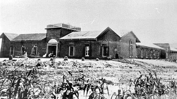 Historic photo of the Shalam colony.