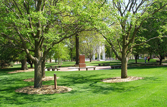 Northwest Missouri State University is the official Missouri State Arboretum.
