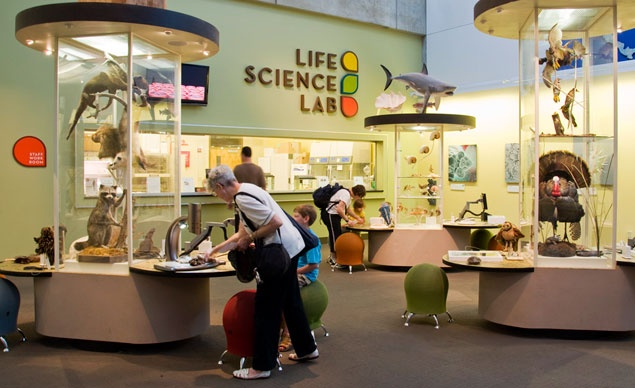 The Life Science Lab at the Center