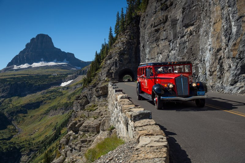 A Red Bus tour traveling along the Going-To-The-Sun Road. Credit: Glacier National Park