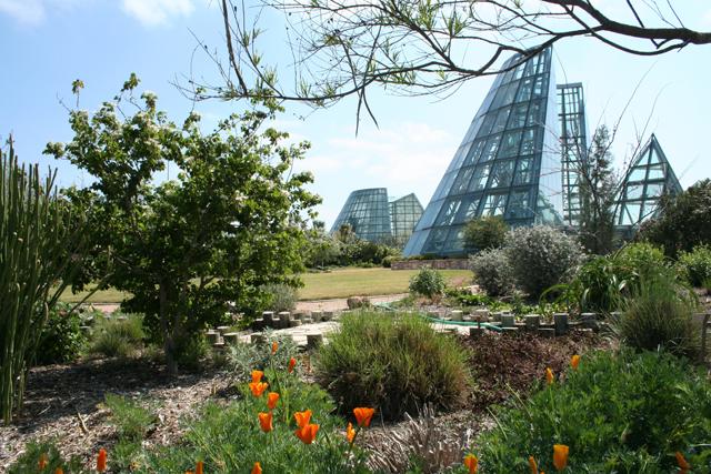 The San Antonio Botanical Garden's Conservatory