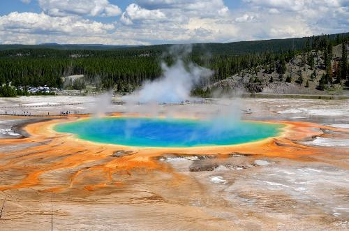 The Grand Prismatic Spring is so colorful thanks to pigmented bacteria that reside around the edges.