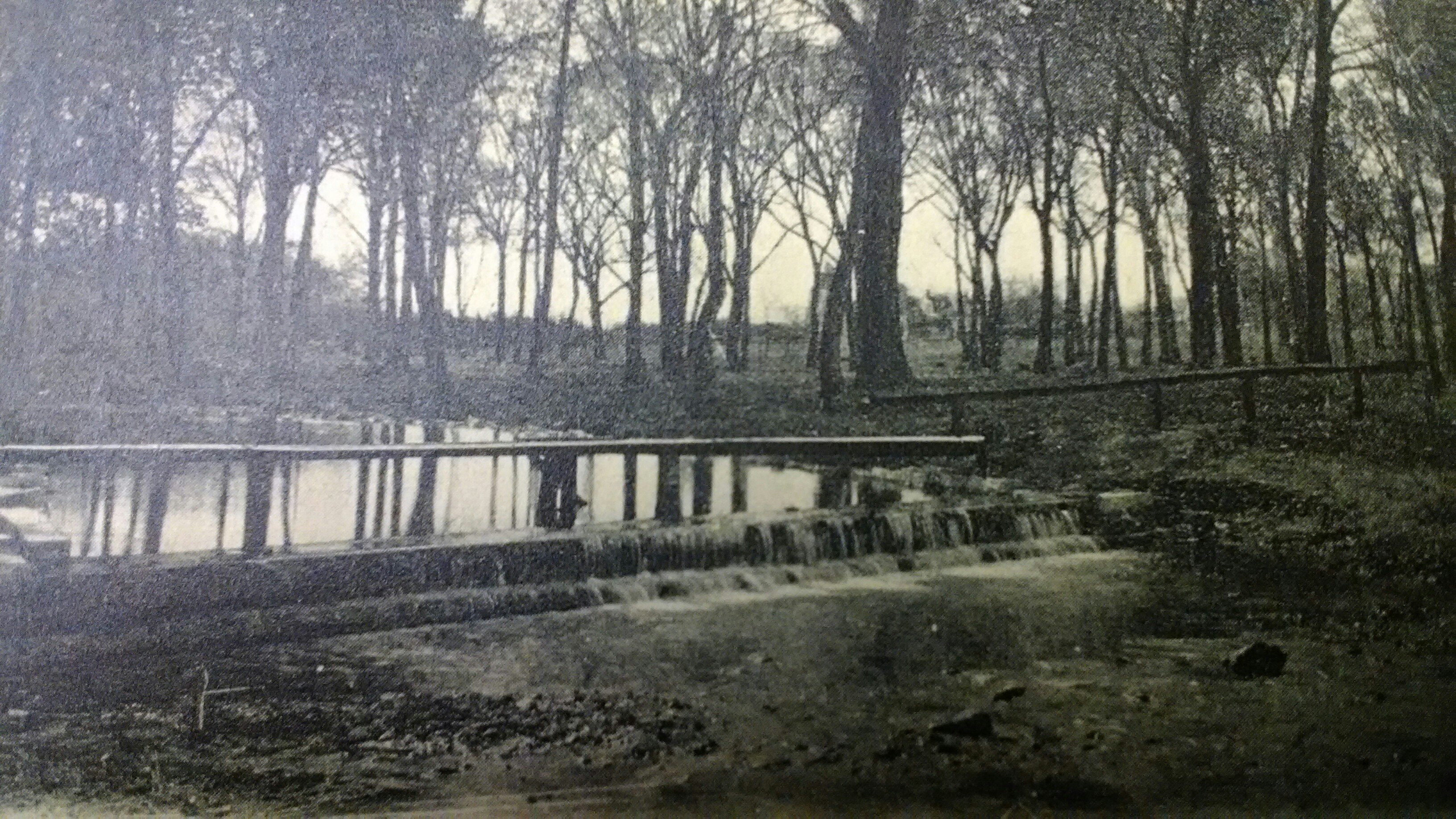 Postcard image of Carter Spring now part of the Battle of Carthage State Historic Site. Featured in temporary postcard display during 175th Anniversary of Carthage exhibit at Powers Museum in 2017.