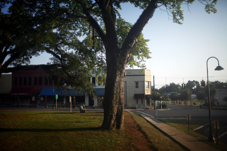 Historians believe that this tree located across the street from the courthouse is where the body of Claude Neal was lynched. Although the FBI investigated the lynching, none of the six men who killed Neal were identified.
