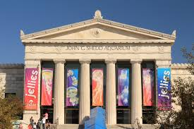 The Shedd Aquarium was founded in 1926 and moved into this beautiful building 1930.
