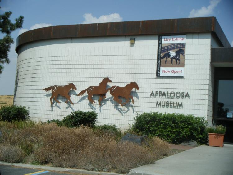 The Appaloosa Museum